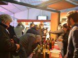 A todo ritmo comenzó la Fiesta del Vino de la Costa en Berisso 9