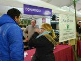 A todo ritmo comenzó la Fiesta del Vino de la Costa en Berisso 14
