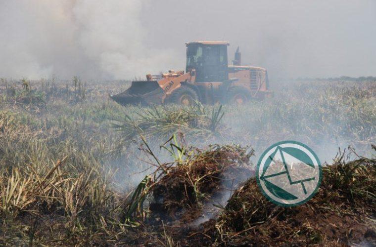 Incendio en la reservade Punata Lara sabado 3 0101