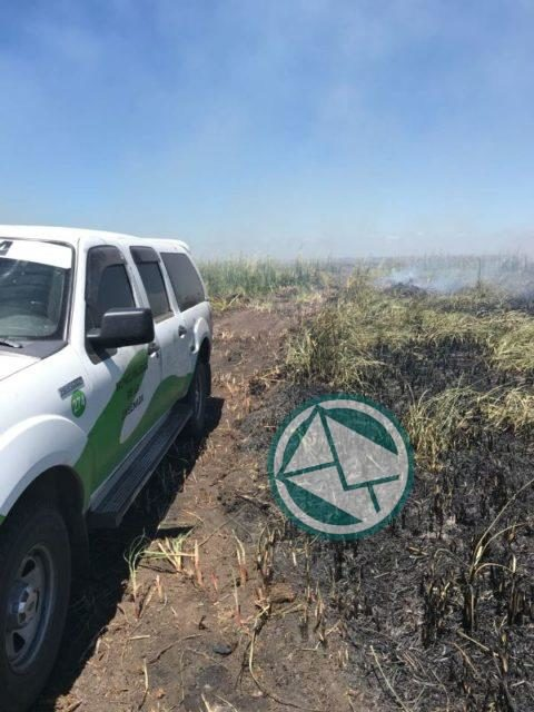 Incendio en la reservade Punata Lara sabado 3 0105