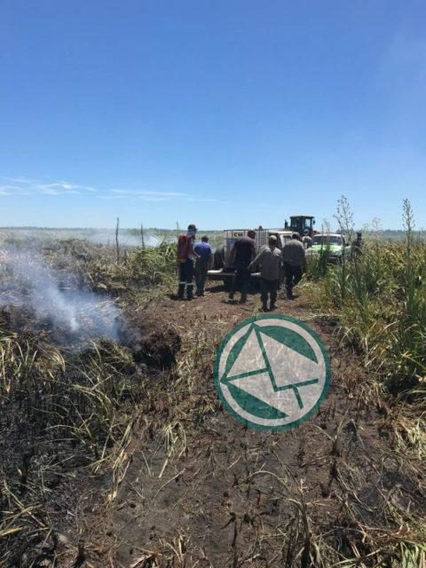 Incendio en la reservade Punata Lara sabado 3 0106