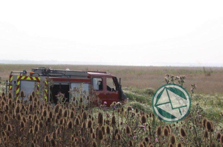 Se logó controlar un nuevo foco de incendio en la Selva Marginal de Punta Lara01