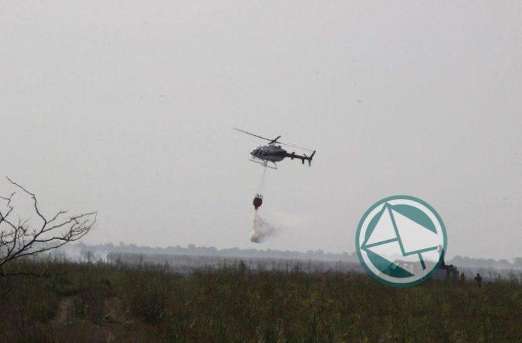 Se logó controlar un nuevo foco de incendio en la Selva Marginal de Punta Lara03