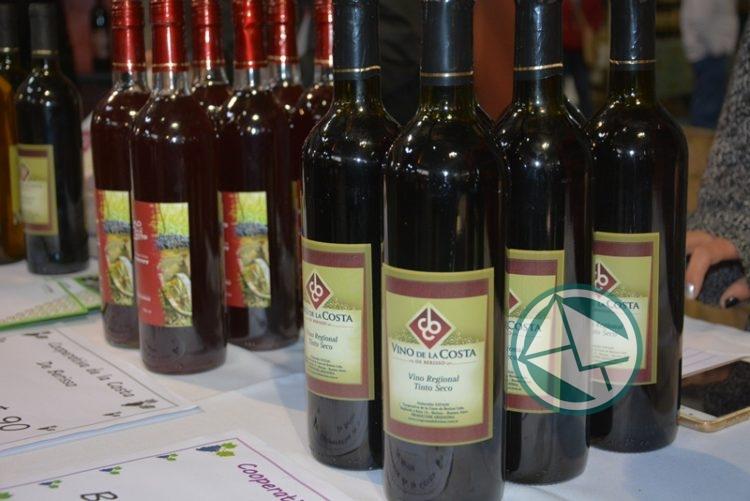Cien mil personas en la XV Fiesta del Vino de la Costa 13