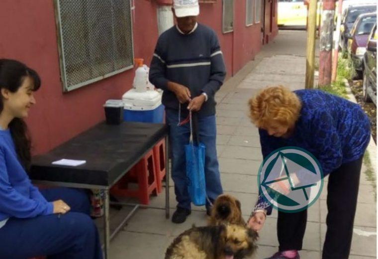 vacunación antirrábica en barrios de La Franja 06