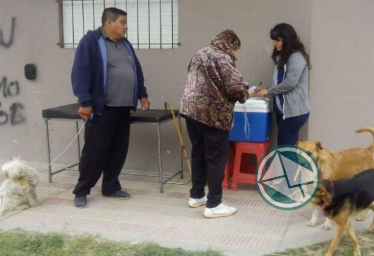 vacunación antirrábica en barrios de La Franja 5
