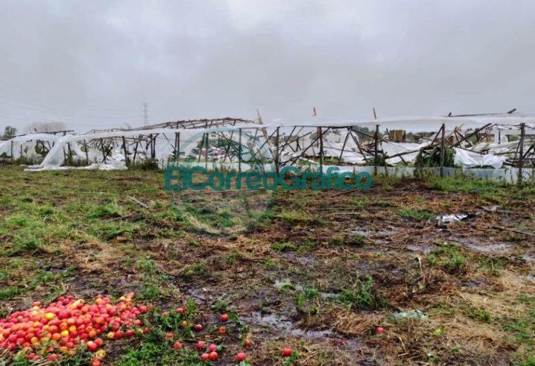 El temporal dejó sin nada a los productores del cordón frutihortícola 4