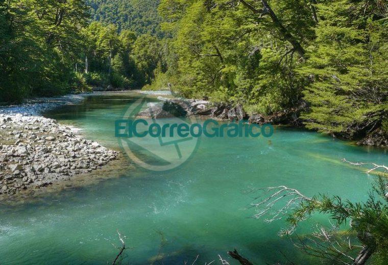 Parque Nacional Los Alerces Esquel Chubut1