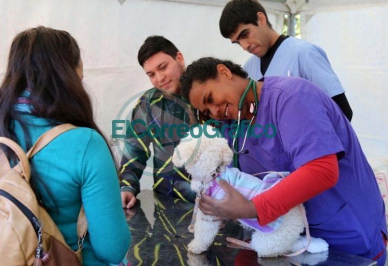 Con gran éxito, se desarrolló una jornada especial por el Día del Animal en la Casa Ecológica 4