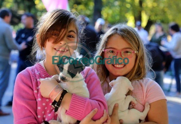 Con gran éxito, se desarrolló una jornada especial por el Día del Animal en la Casa Ecológica 7