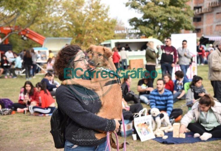 """Más de 25 mil personas disfrutaron de la primera edición de """"FLAP! Festivales La Plata"""" 06"""