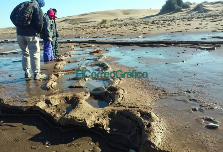 Reserva Pehuencó