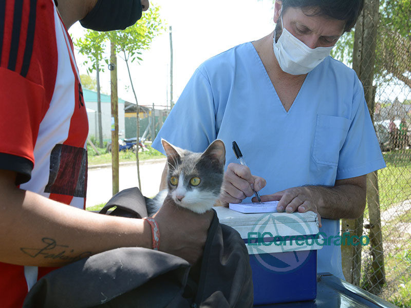 Operativo Sanitario Integral en el barrio Santa Teresita 1