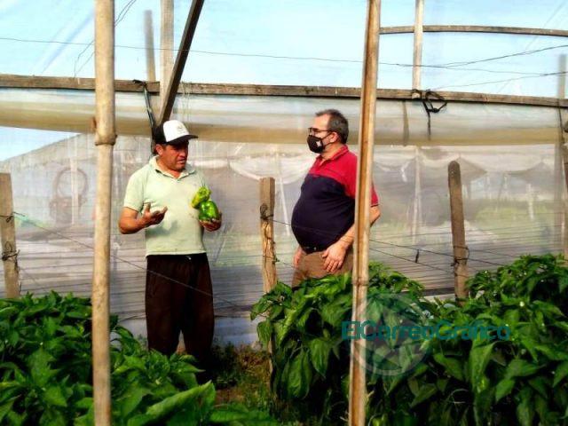 UTN La Plata diseña casas e invernaderos móviles para frutihorticultores 1