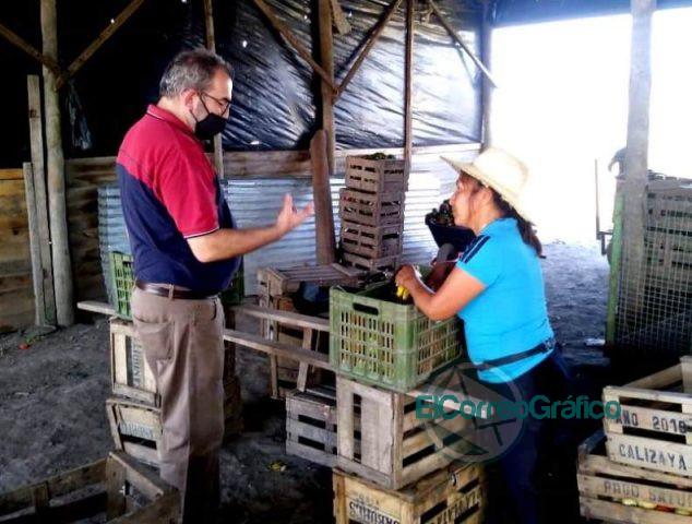 UTN La Plata diseña casas e invernaderos móviles para frutihorticultores 2