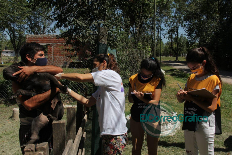 Jornada de vacunacion veterinaria gratuita en Etcheverry