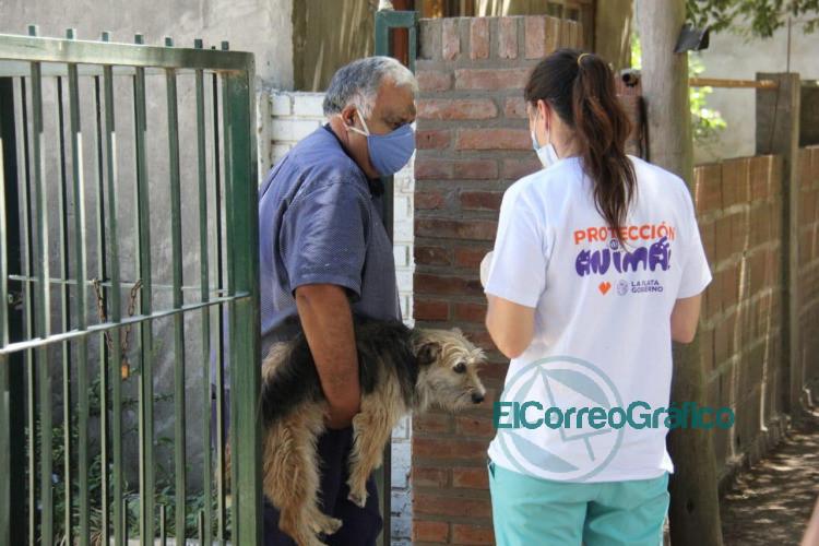 Operativo de vacunacion animal puerta a puerta en Arana