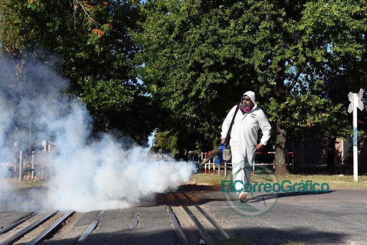 Piden acentuar el descacharreo para evitar la propagacion del mosquito del dengue 2