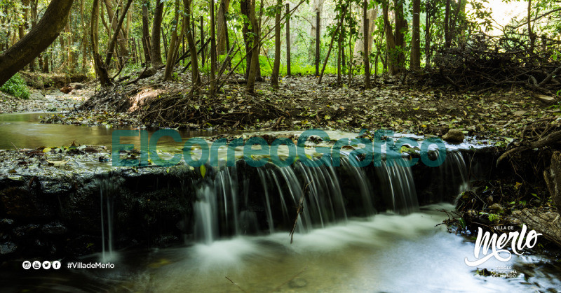 Encontrarse con la naturaleza y sus aromas serranos en Merlo 14