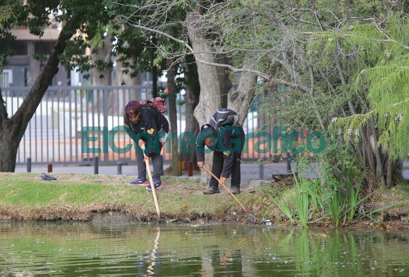 Saneamiento y renovacion en el lago del Paseo del Bosque 3
