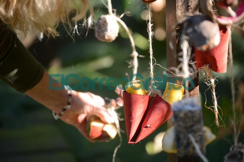 impulsan actividades para promover habitos naturales en especies en cautiverio 3