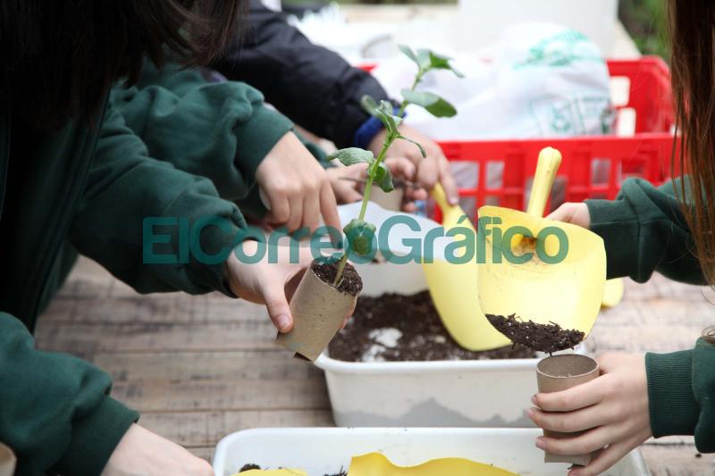Durante el mes de junio presentan talleres virtuales en la Casa Ecologica 📬 El Correo Grafico