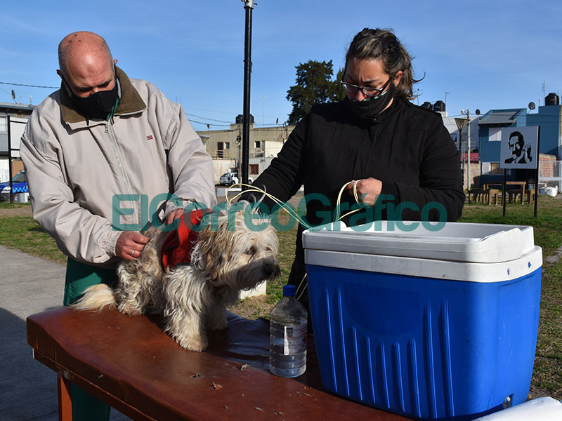 Atencion Primaria de Mascotas en el Barrio Eva Peron 3
